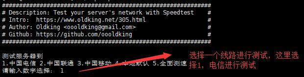 Linux VPS速度测试方法步骤2