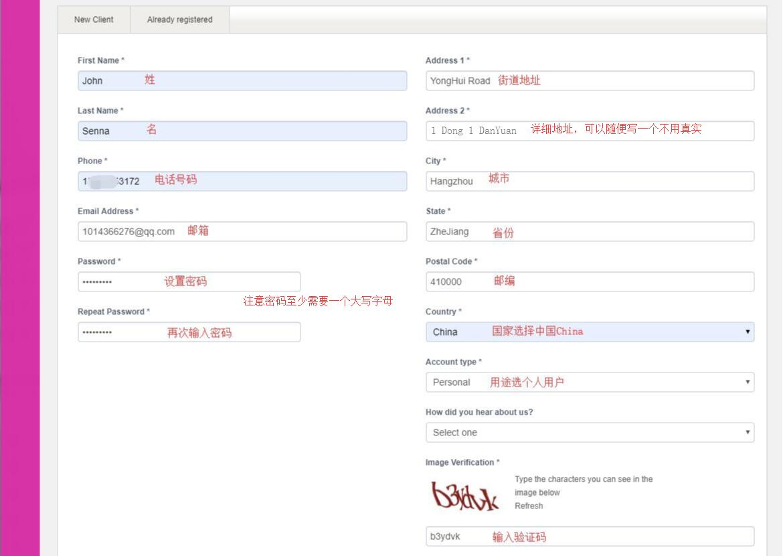 GigsGigs 香港VPS 用户信息填写