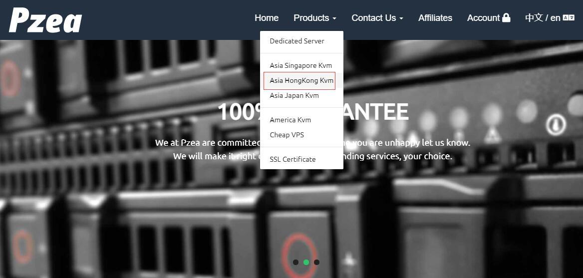 PZEA香港VPS购买教程 - 首页选择