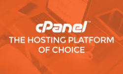 cPanel Linux VPS  使用教程