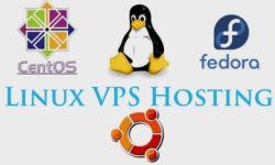 超级便宜美国 Linux VPS介绍,为新手推荐高性价比的美国 Linux VPS