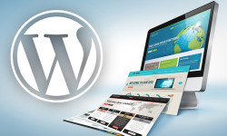 Linux VPS 搭建WordPress详细图文教程,Linux下使用LNMP一键安装WordPress