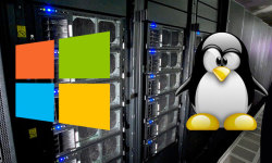 Linux VPS 和 Windows VPS的区别