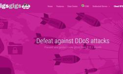 国外DDoS防御VPS GigsGigsCloud 推荐