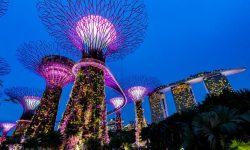 VPB新加坡独立服务器推荐 - CN2线路支持