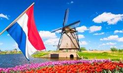 LOCVPS便宜荷兰VPS推荐 - CN2线路/Windows支持