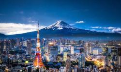 TmhHost日本服务器推荐 - 多IP支持