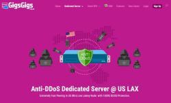 GigsGigs的便宜美国独立服务器推荐 - CN2 GIA无限流量/免费防DDoS攻击保护