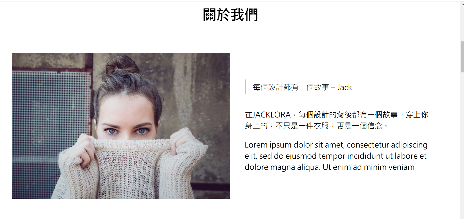 外贸网站搭建教程 - 媒体及文字设置效果